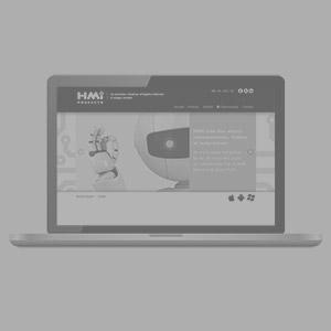 hmi-web-300
