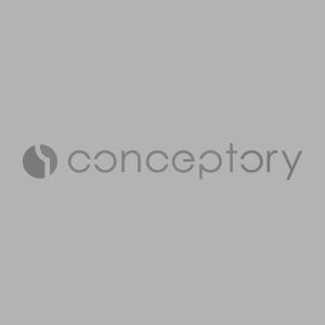 conceptory-vignettes